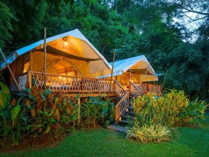 Nature Lodges and Camps